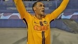 Guillaume Hoarau (Young Boys)