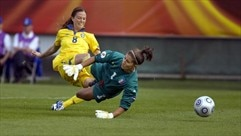See Schelin's 2013 strike for Sweden against Italy