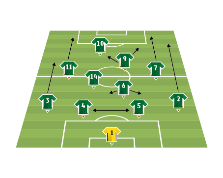 Republic of Ireland team analysis